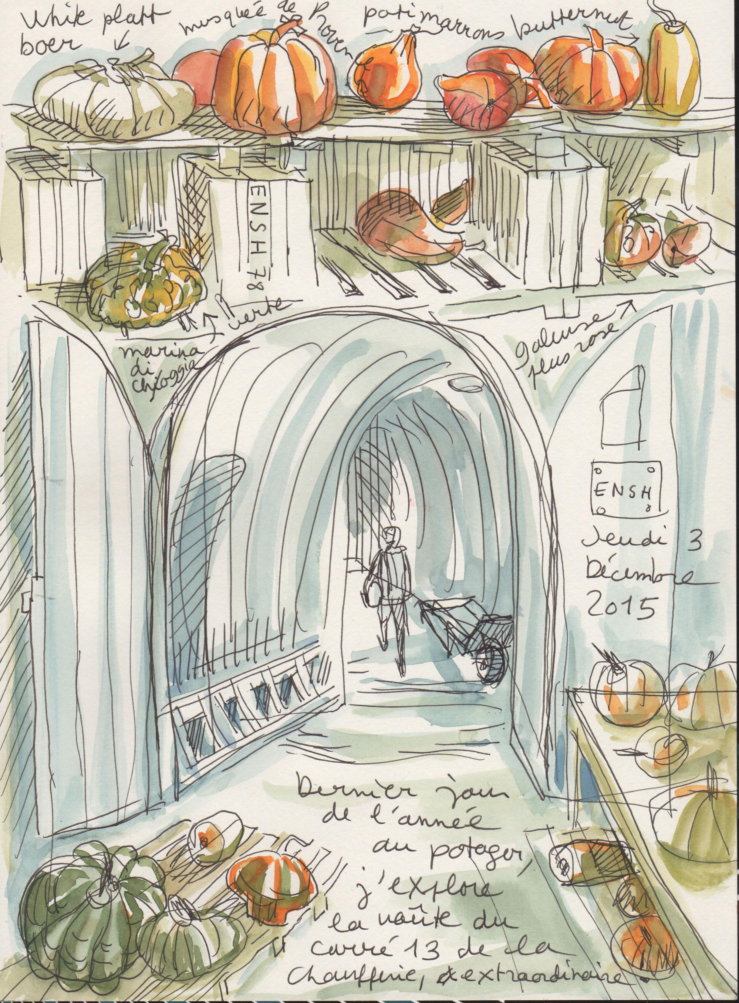 Potager du roi archives rapha le bernard bacot - Le potager du roi ...