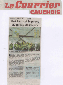 2013 Courrier Cauchois01