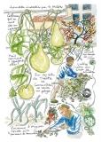 jardiniers_des_villes-117-valery