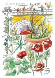 jardiniers_des_villes-83-mariam