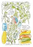 jardiniers_des_villes-97-anna